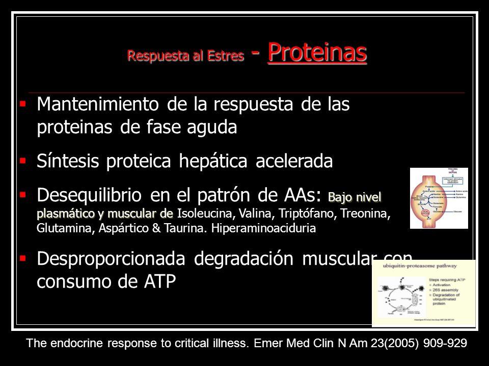 Respuesta al Estres - Proteinas