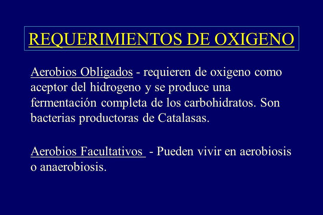 REQUERIMIENTOS DE OXIGENO