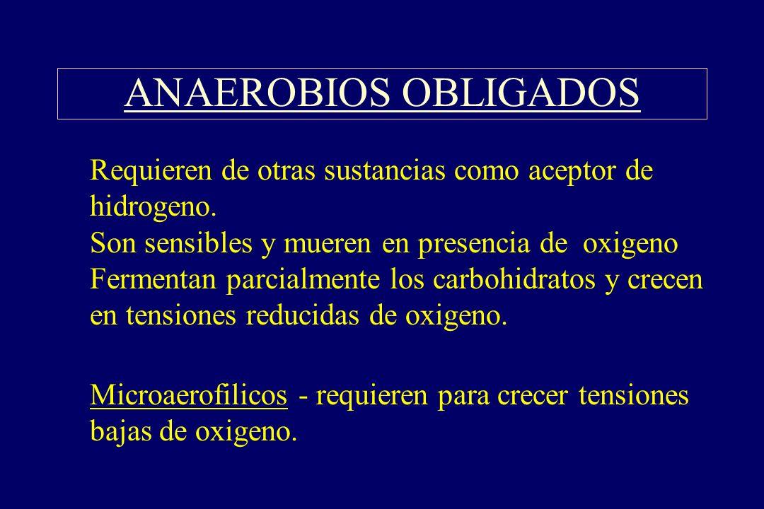 ANAEROBIOS OBLIGADOS