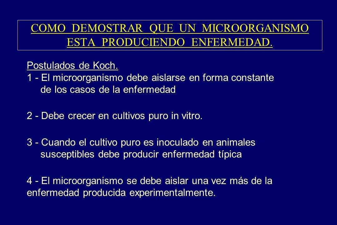 COMO DEMOSTRAR QUE UN MICROORGANISMO ESTA PRODUCIENDO ENFERMEDAD.