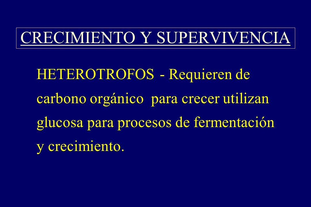 CRECIMIENTO Y SUPERVIVENCIA