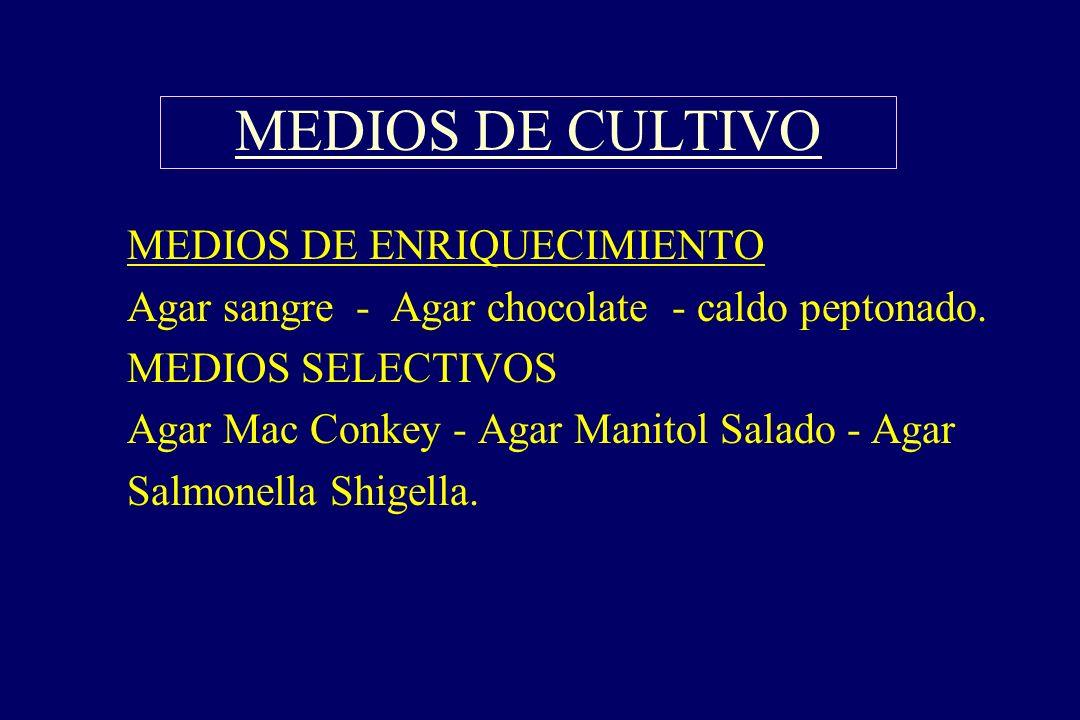 MEDIOS DE CULTIVO