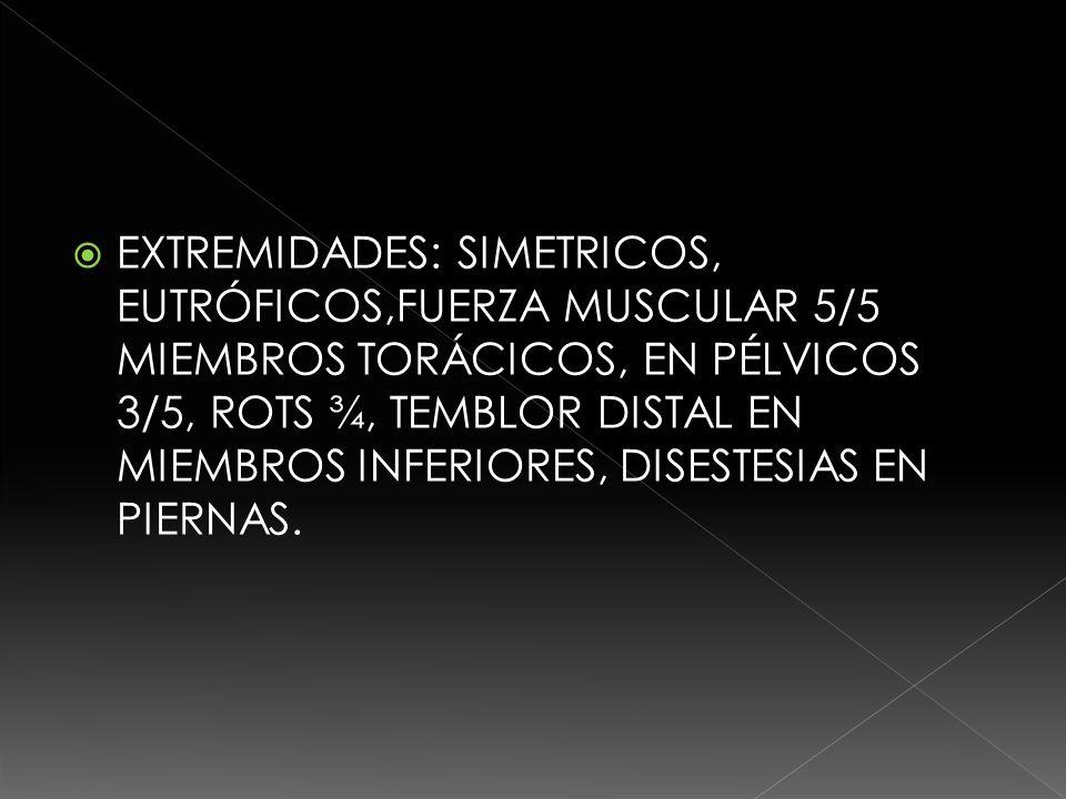 EXTREMIDADES: SIMETRICOS, EUTRÓFICOS,FUERZA MUSCULAR 5/5 MIEMBROS TORÁCICOS, EN PÉLVICOS 3/5, ROTS ¾, TEMBLOR DISTAL EN MIEMBROS INFERIORES, DISESTESIAS EN PIERNAS.