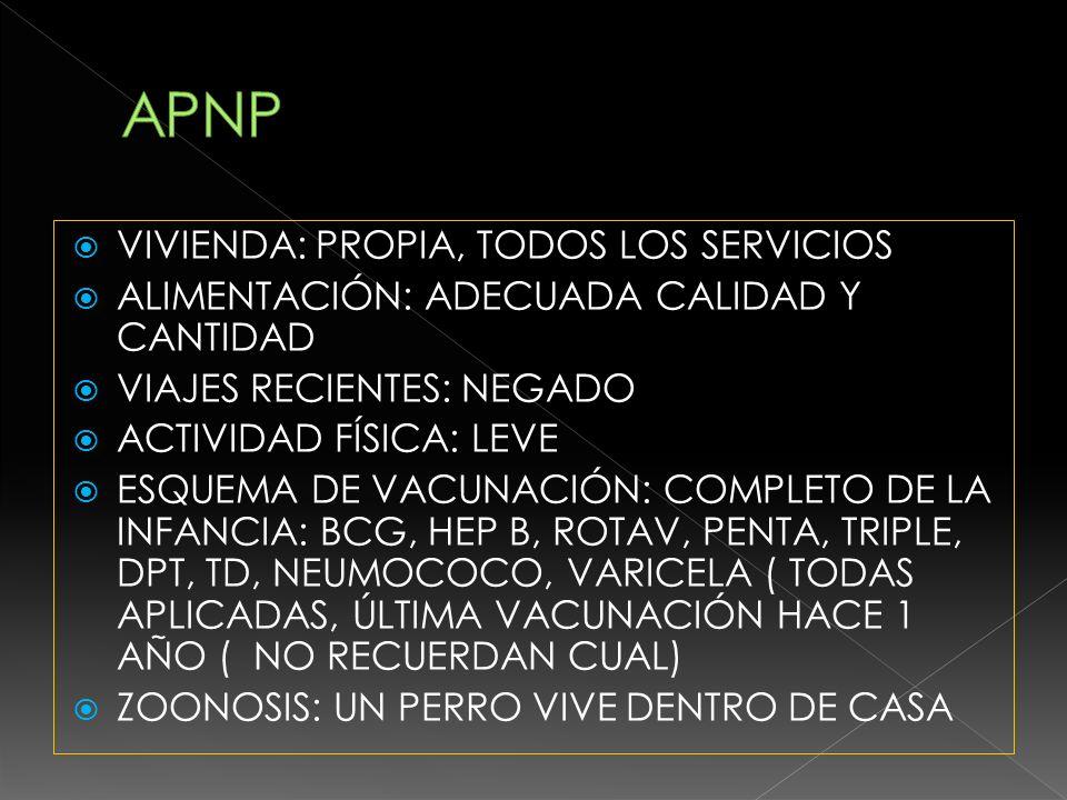 APNP VIVIENDA: PROPIA, TODOS LOS SERVICIOS