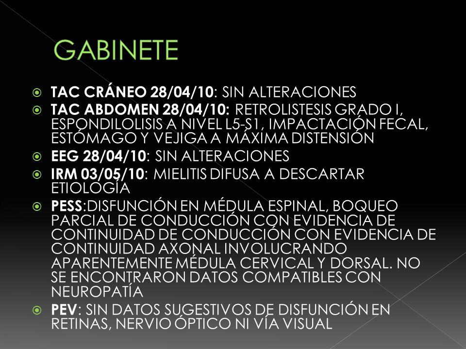GABINETE TAC CRÁNEO 28/04/10: SIN ALTERACIONES