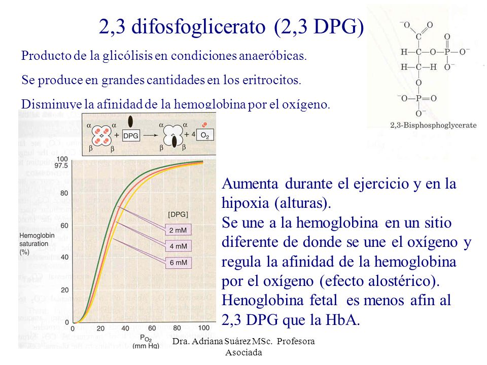 2,3 difosfoglicerato (2,3 DPG)