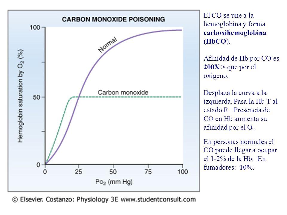 El CO se une a la hemoglobina y forma carboxihemoglobina (HbCO).
