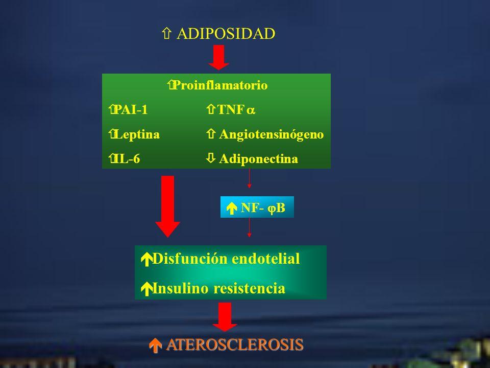 Disfunción endotelial Insulino resistencia