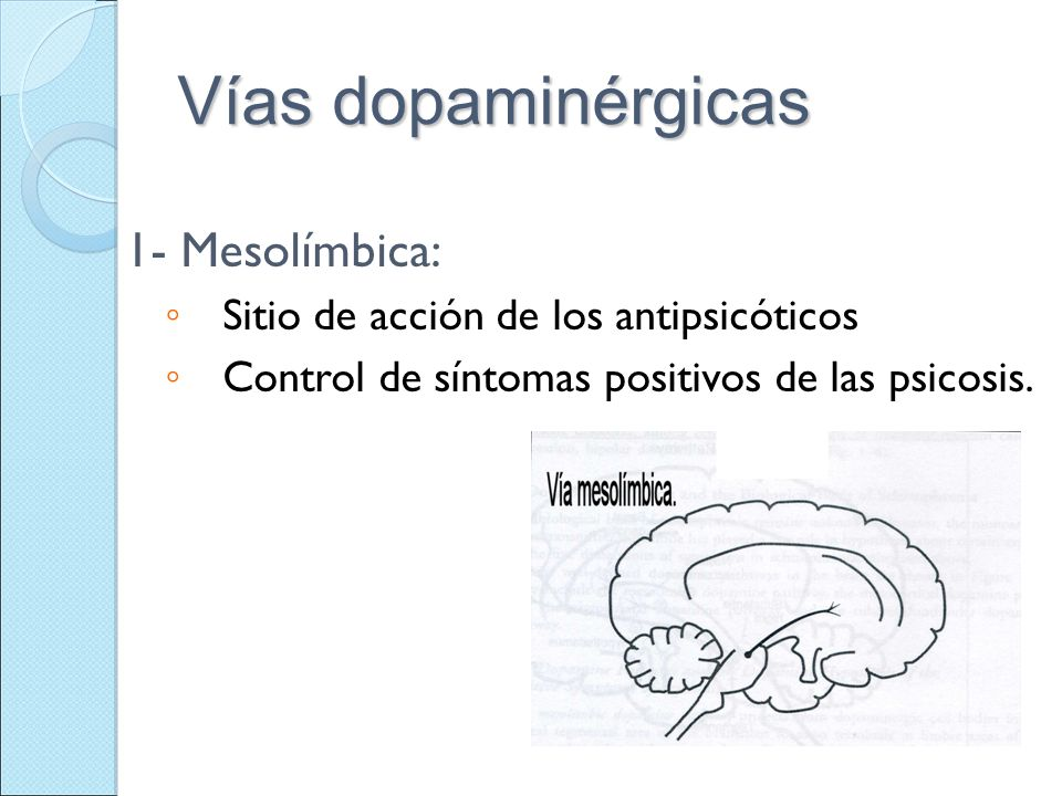 Vías dopaminérgicas 1- Mesolímbica: