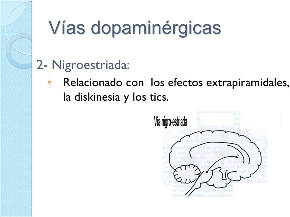 Vías dopaminérgicas 2- Nigroestriada: