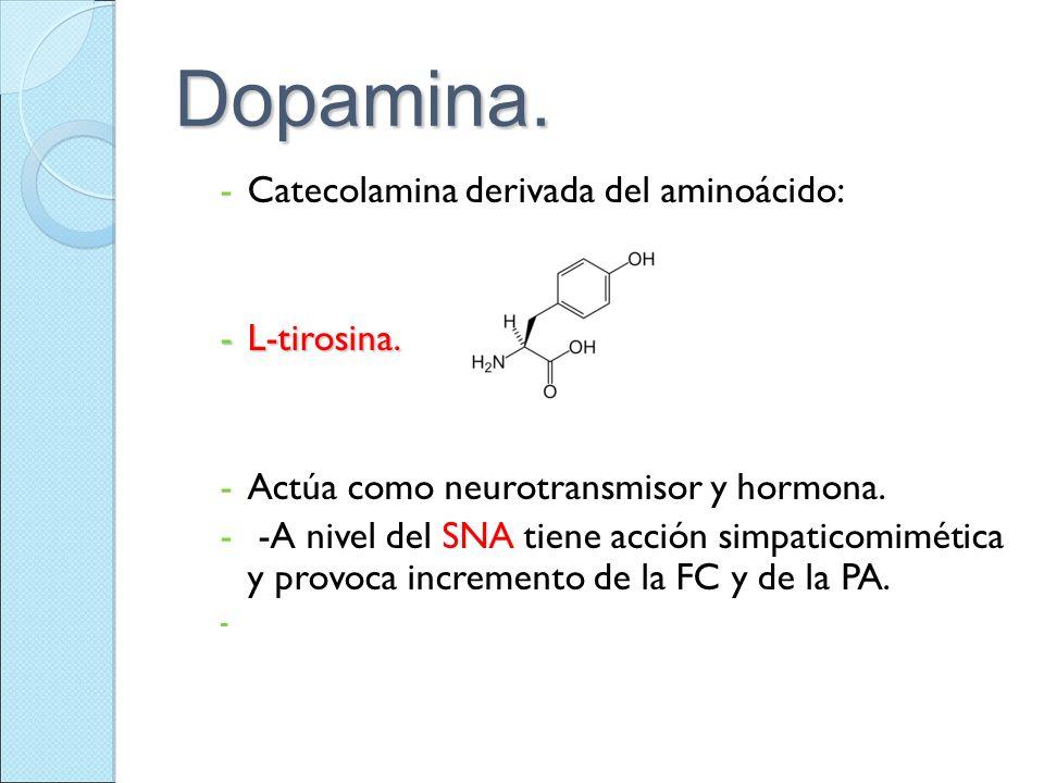 Dopamina. Catecolamina derivada del aminoácido: L-tirosina.