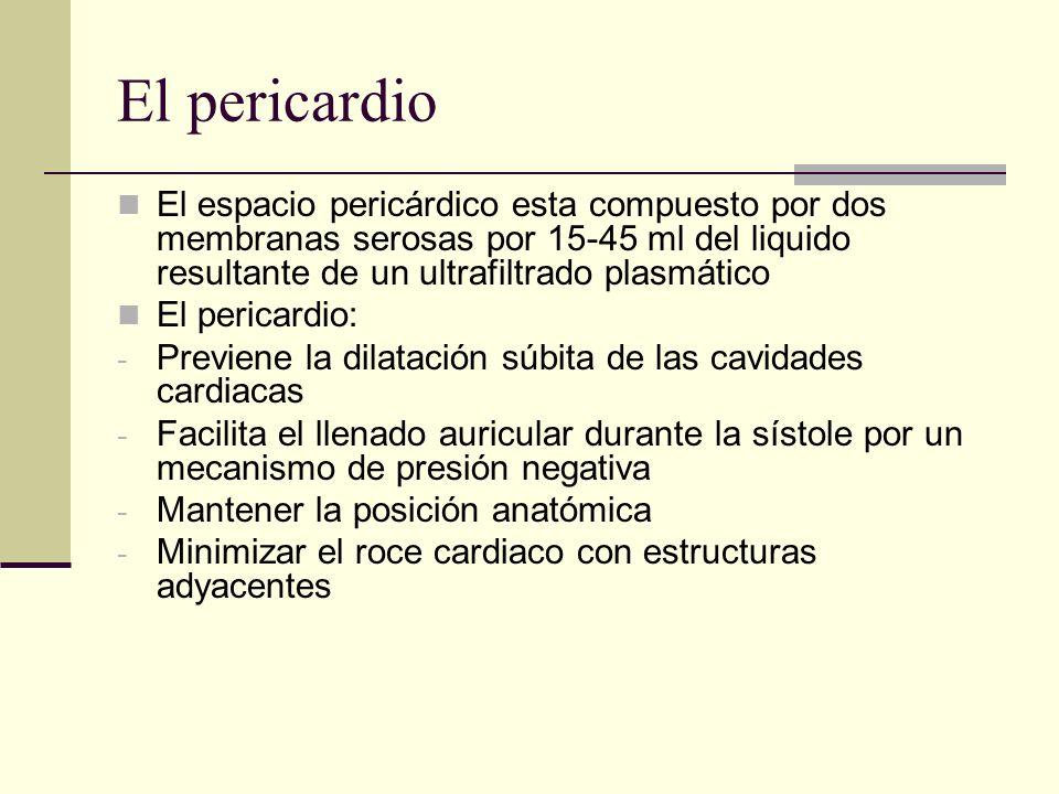 El pericardio El espacio pericárdico esta compuesto por dos membranas serosas por 15-45 ml del liquido resultante de un ultrafiltrado plasmático.