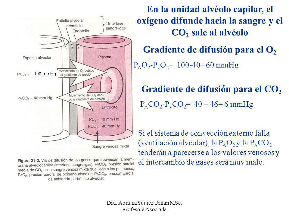 Gradiente de difusión para el O2 Gradiente de difusión para el CO2