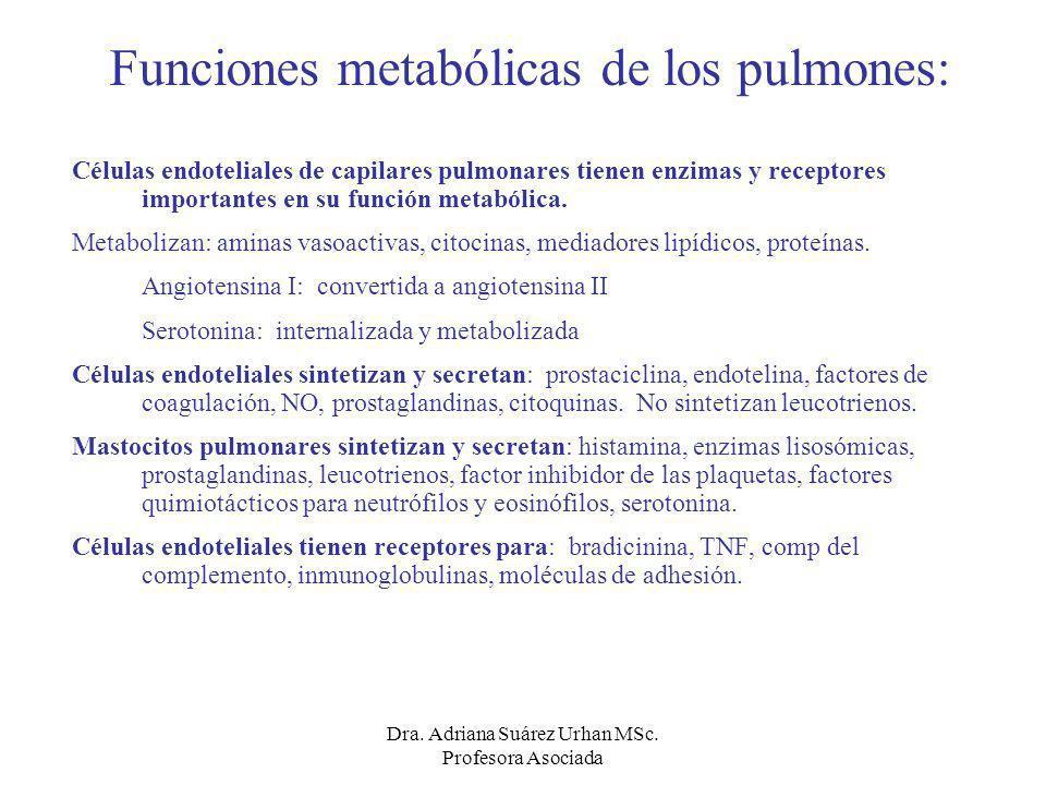 Funciones metabólicas de los pulmones:
