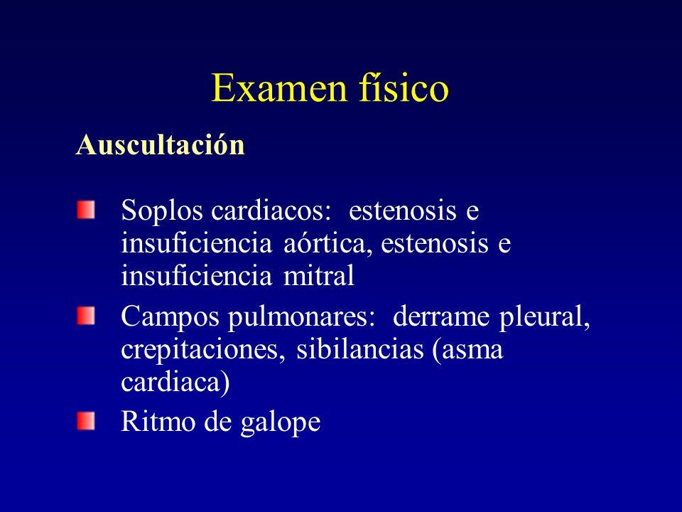 Examen físico Auscultación