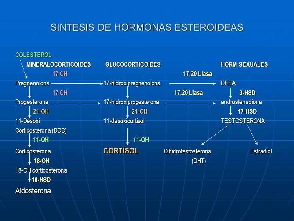 SINTESIS DE HORMONAS ESTEROIDEAS