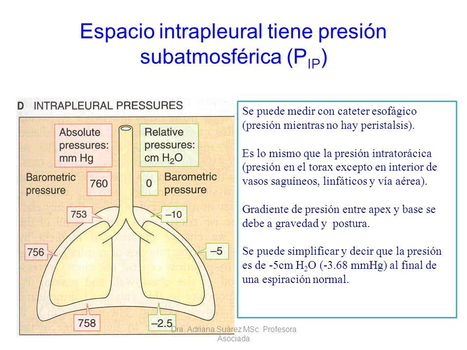 Espacio intrapleural tiene presión subatmosférica (PIP)