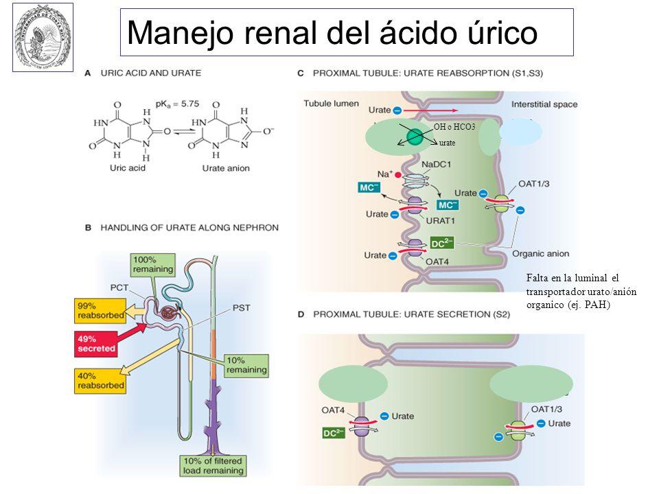 Manejo renal del ácido úrico