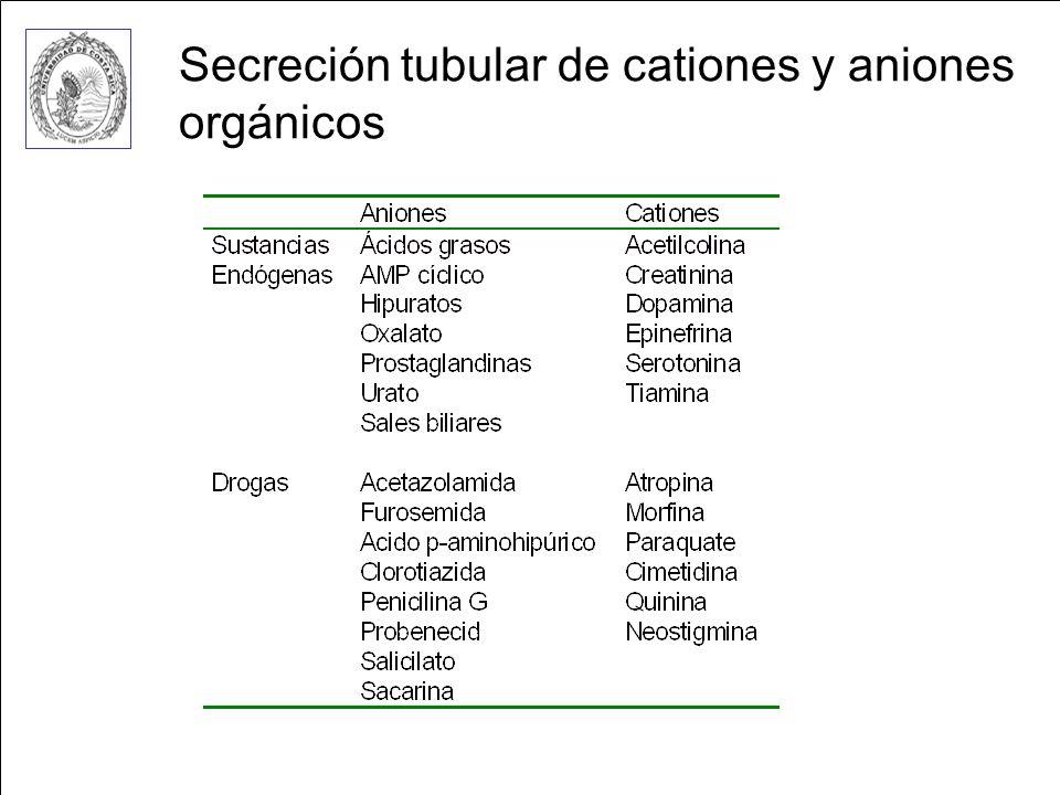 Secreción tubular de cationes y aniones orgánicos