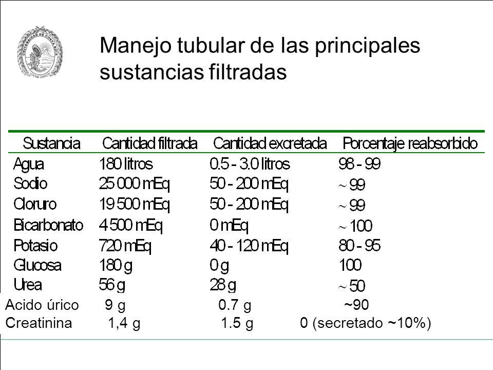 Manejo tubular de las principales sustancias filtradas