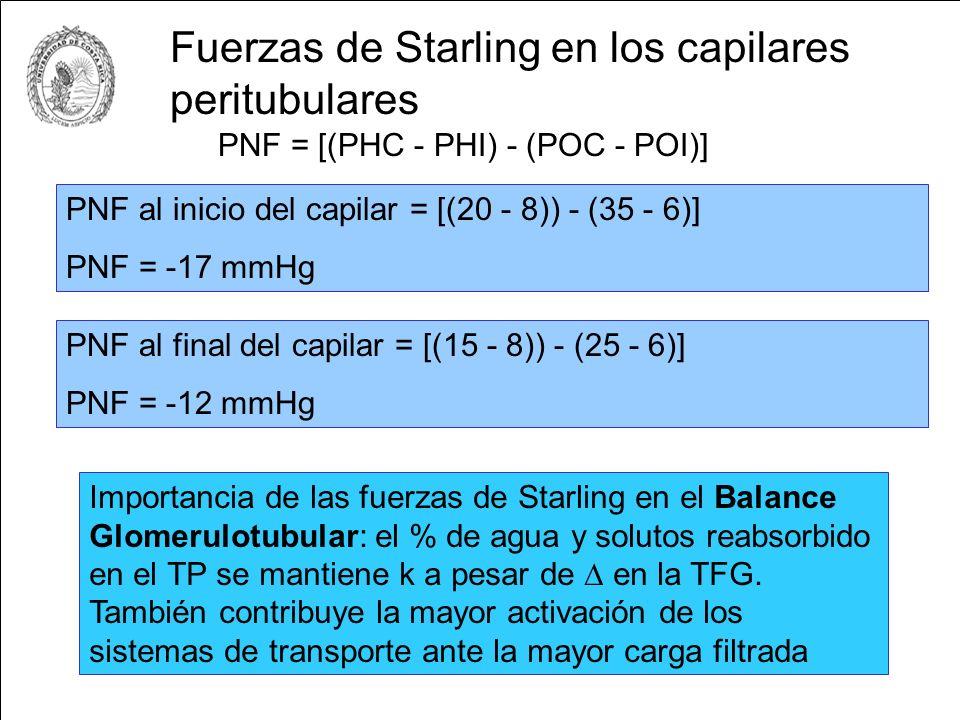 Fuerzas de Starling en los capilares peritubulares