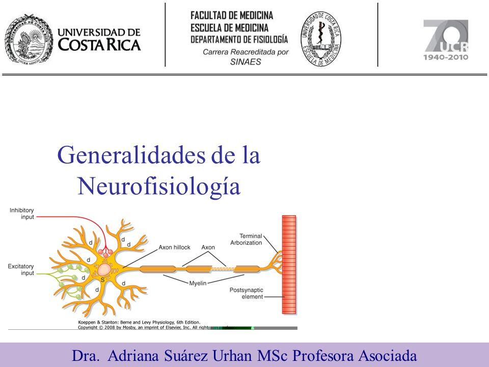 Generalidades de la Neurofisiología