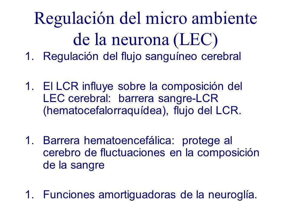 Regulación del micro ambiente de la neurona (LEC)