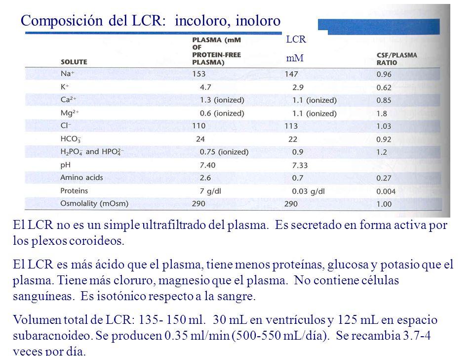 Composición del LCR: incoloro, inoloro