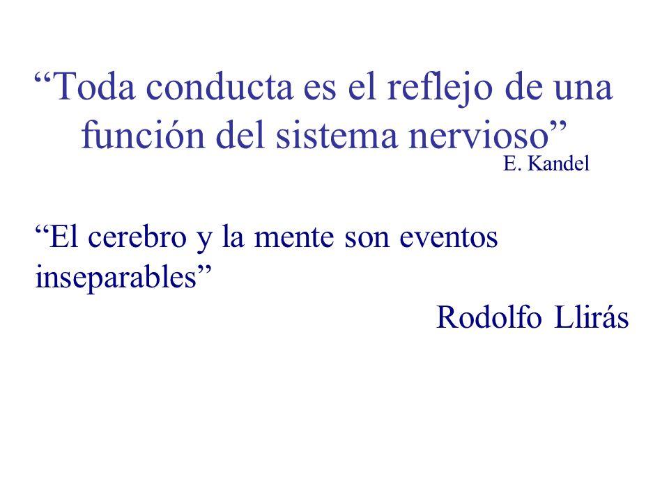 Toda conducta es el reflejo de una función del sistema nervioso