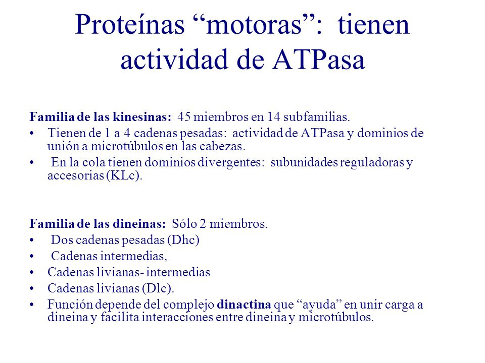 Proteínas motoras : tienen actividad de ATPasa