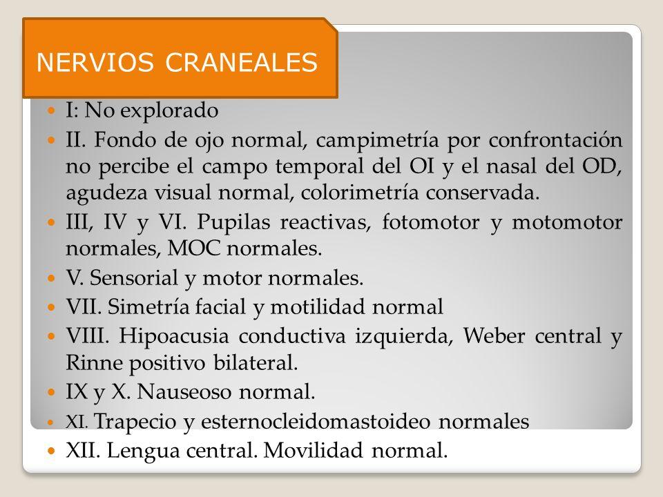 NERVIOS CRANEALES Nervios craneales: I: No explorado