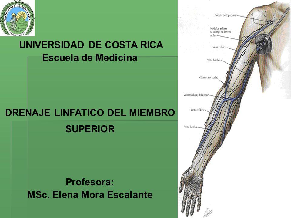 DRENAJE LINFATICO DEL MIEMBRO SUPERIOR MSc. Elena Mora Escalante
