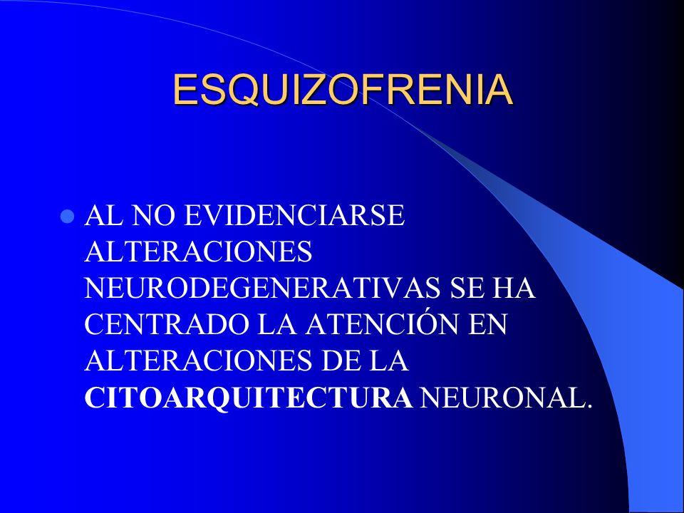 ESQUIZOFRENIAAL NO EVIDENCIARSE ALTERACIONES NEURODEGENERATIVAS SE HA CENTRADO LA ATENCIÓN EN ALTERACIONES DE LA CITOARQUITECTURA NEURONAL.