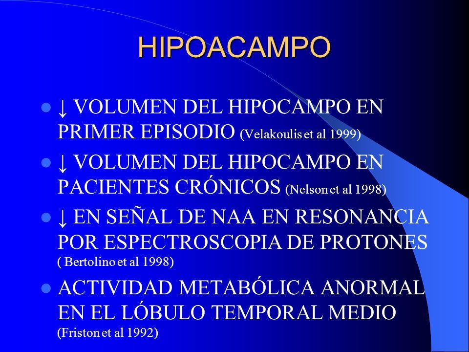HIPOACAMPO ↓ VOLUMEN DEL HIPOCAMPO EN PRIMER EPISODIO (Velakoulis et al 1999) ↓ VOLUMEN DEL HIPOCAMPO EN PACIENTES CRÓNICOS (Nelson et al 1998)
