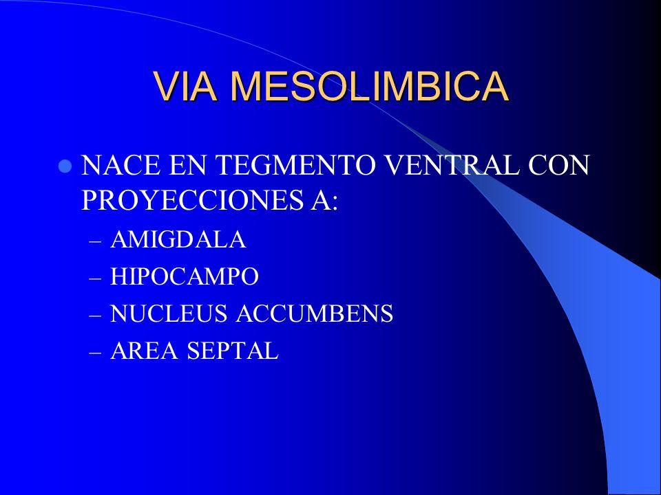 VIA MESOLIMBICA NACE EN TEGMENTO VENTRAL CON PROYECCIONES A: AMIGDALA