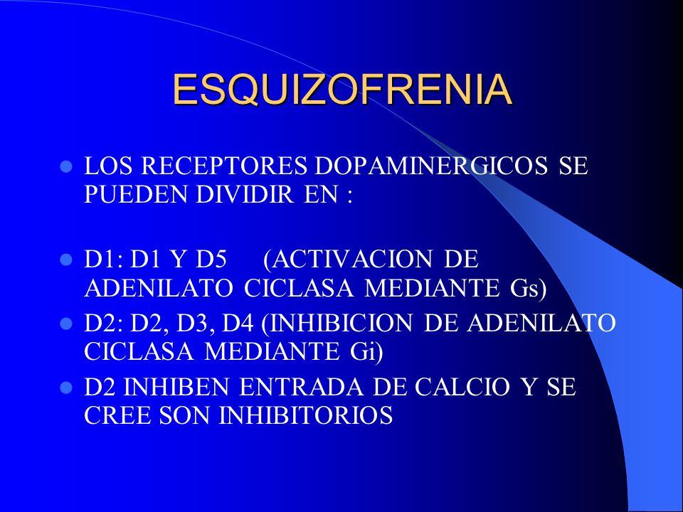 ESQUIZOFRENIA LOS RECEPTORES DOPAMINERGICOS SE PUEDEN DIVIDIR EN :