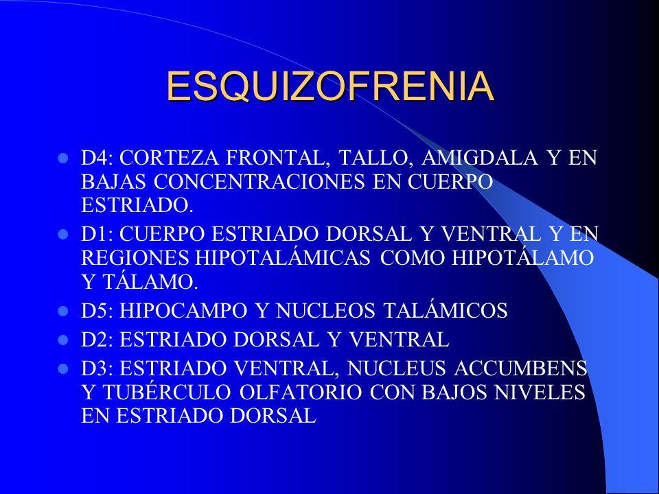 ESQUIZOFRENIAD4: CORTEZA FRONTAL, TALLO, AMIGDALA Y EN BAJAS CONCENTRACIONES EN CUERPO ESTRIADO.