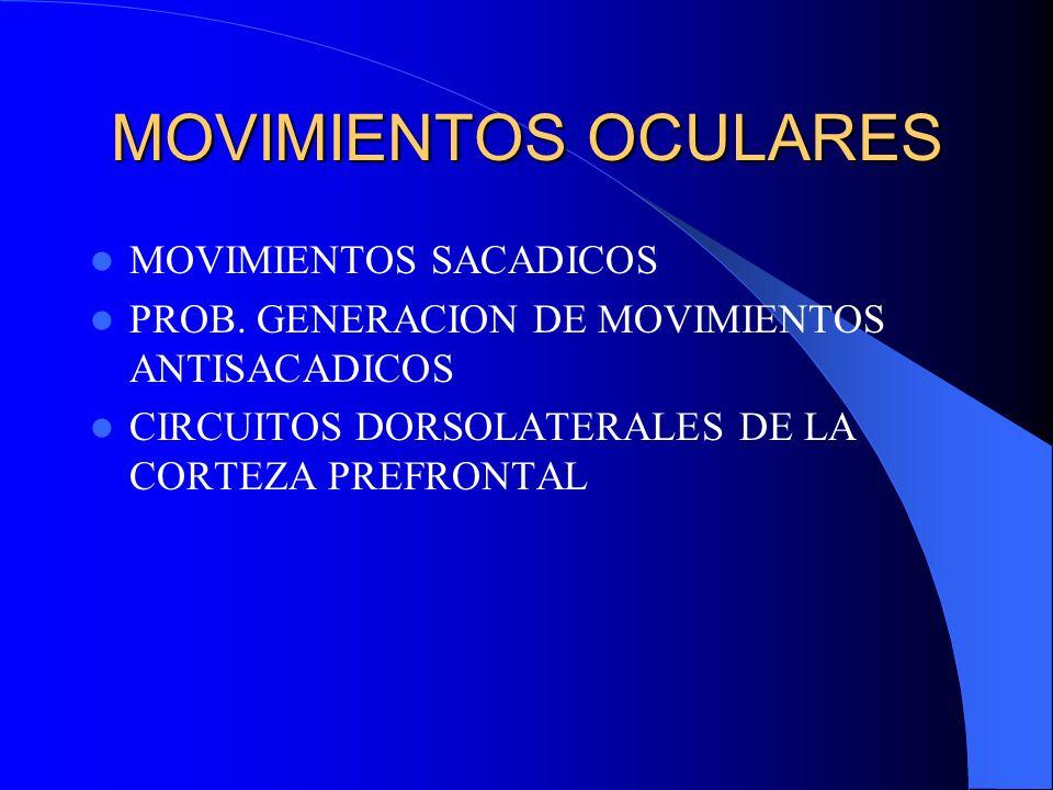 MOVIMIENTOS OCULARES MOVIMIENTOS SACADICOS