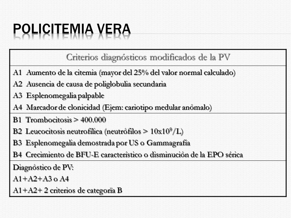 Criterios diagnósticos modificados de la PV