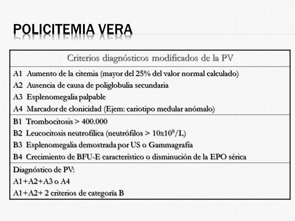 Criterios diagnósticos modificados de la PV