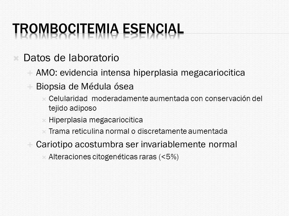 Trombocitemia esencial