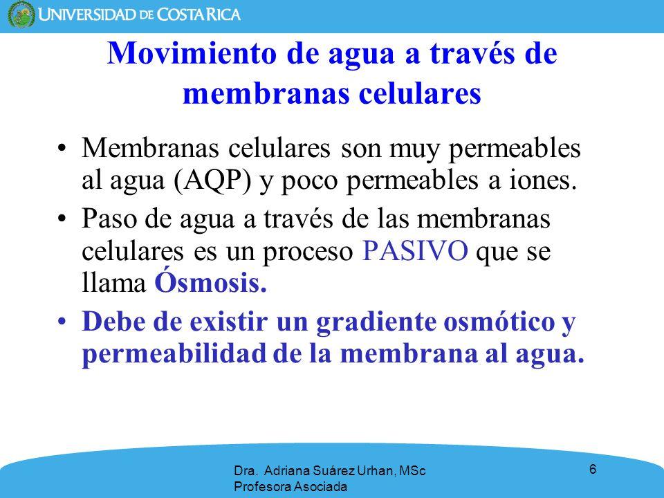 Movimiento de agua a través de membranas celulares