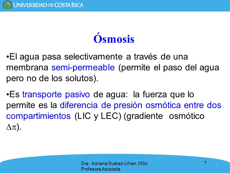 Ósmosis El agua pasa selectivamente a través de una membrana semi-permeable (permite el paso del agua pero no de los solutos).
