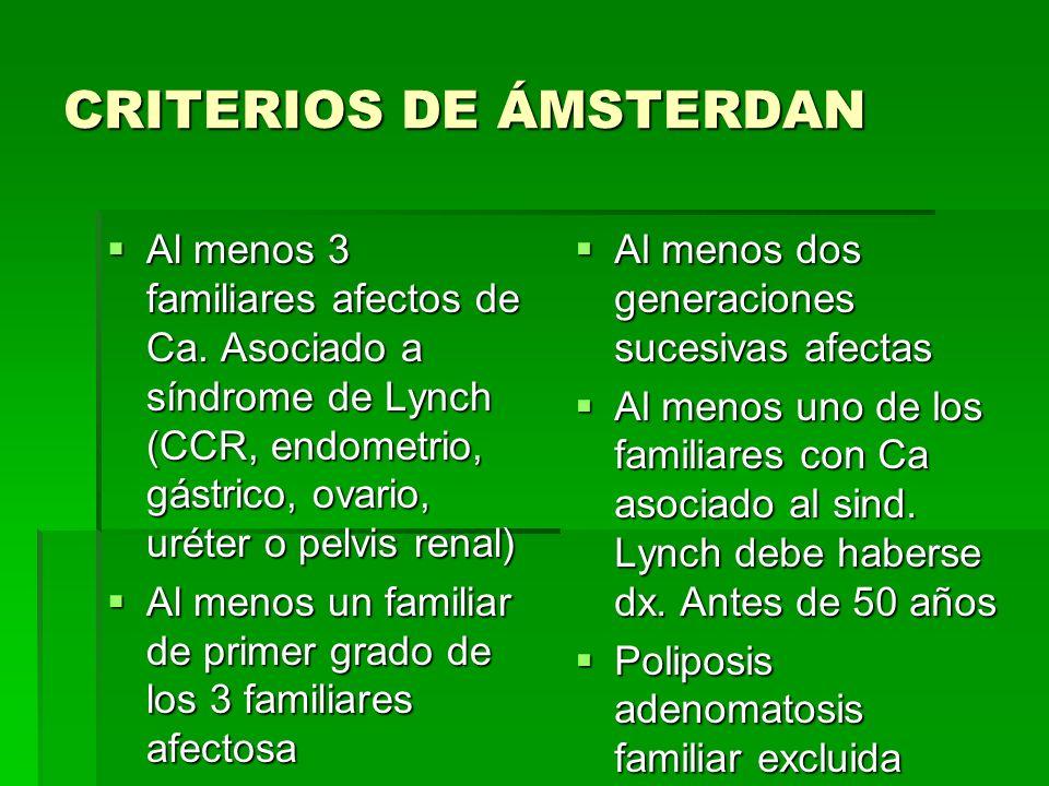 CRITERIOS DE ÁMSTERDAN