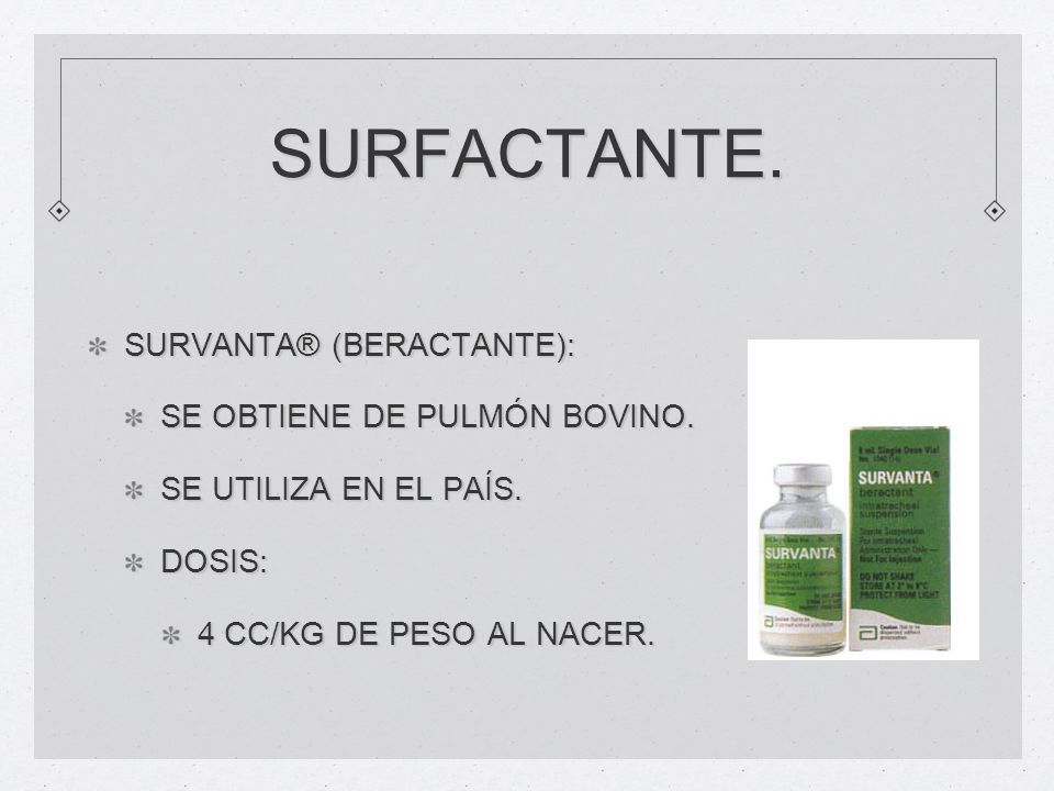 SURFACTANTE. SURVANTA® (BERACTANTE): SE OBTIENE DE PULMÓN BOVINO.