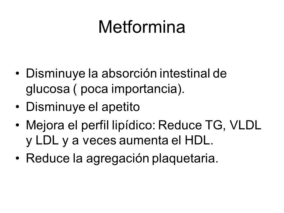 Metformina Disminuye la absorción intestinal de glucosa ( poca importancia). Disminuye el apetito.