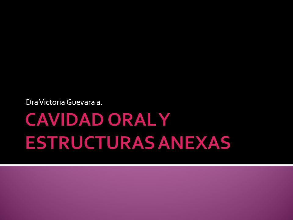 CAVIDAD ORAL Y ESTRUCTURAS ANEXAS
