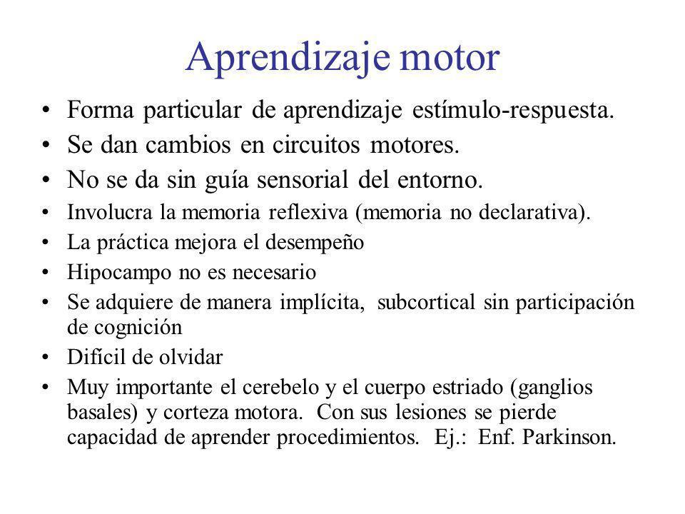 Aprendizaje motor Forma particular de aprendizaje estímulo-respuesta.