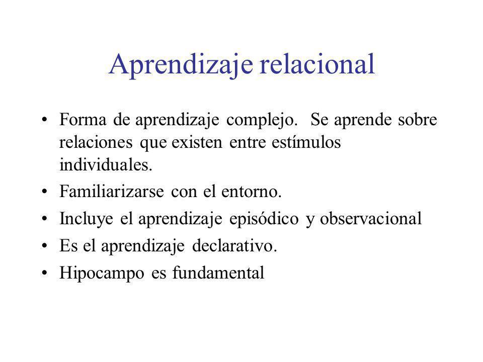 Aprendizaje relacional