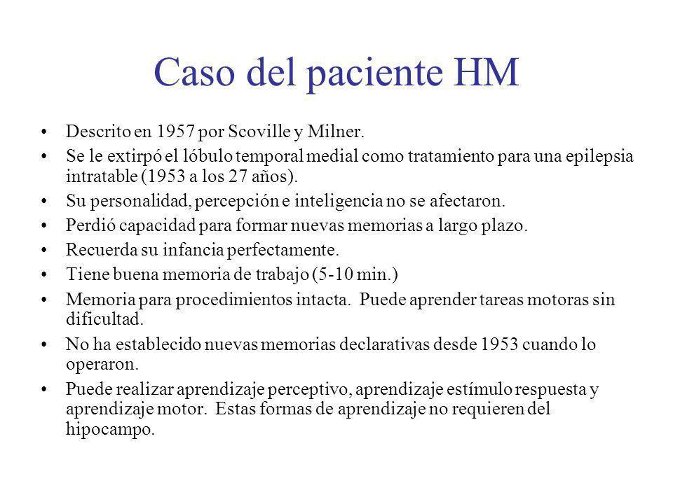 Caso del paciente HM Descrito en 1957 por Scoville y Milner.